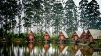 Suasana alam dan pegunungan di Dusun Bambu akan memberikan sensasi yang berbeda dalam menyambut tahun baru