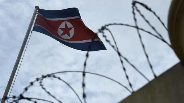 Tentara Korea Utara Nekat Seberangi Dmz Membelot Ke Korea Selatan