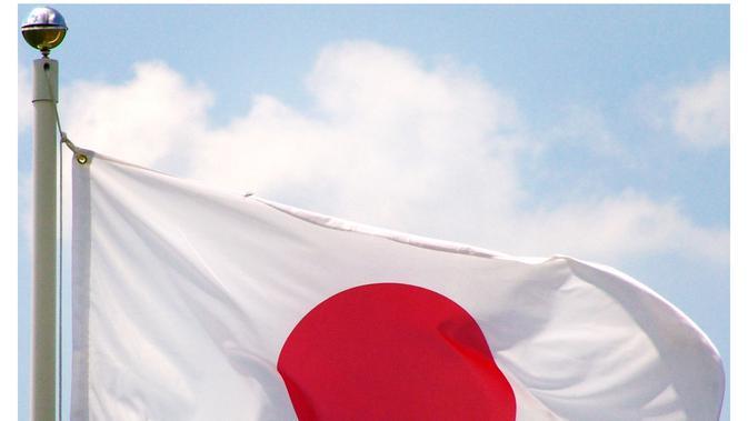 Bendera Jepang (via onlinestores.com)