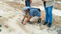 Petugas BBKSDA Riau menemukan jejak harimau sumatra di lokasi tambang pasir Kabupaten Kampar. (Liputan6.com/M Syukur)