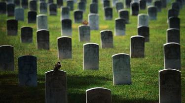 Ilustrasi pemakaman. (list25.com)