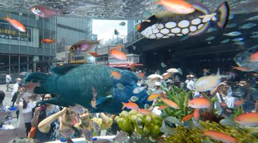 Ikan Terumbu Karang Eksotis Jadi Daya Tarik di Tokyo