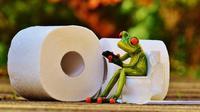 Ilustrasi Gunakan Gadget saat di Toilet (Foto: Pixabay)