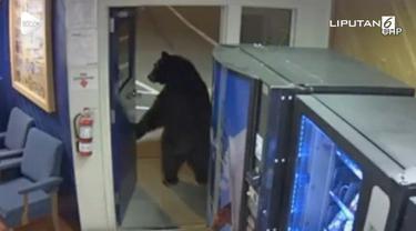 Rekaman kamera cctv menunjukkan seekor beruang masuk kantor polisi. Tak lama berselang, beruang keluar sembari dikejar oleh petugas.