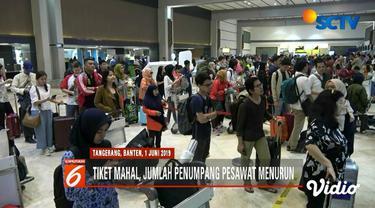 Menko Perekonomian Darmin Nasution katakan sudah ada maskapai yang menurunkan tarif tiket pesawat pada pekan ini.