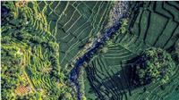 Indonesia akan menjadi tuan rumah dalam gelaran The 3rd World Irrigation Forum (WIF) & 70th International Executive Council Meeting (IECM) pada 1 – 7 September 2019 di Bali