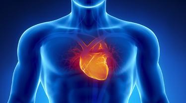 10 Macam Macam Penyakit Jantung yang Paling Sering Menyerang, Waspadai Sejak Dini