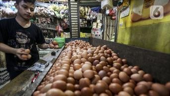 Harga Telur Ayam Terjun Bebas, Peternak Resah