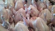 Daging ayam potong segar di Pasar Slipi. Dok: Tommy Kurnia/Liputan6.com