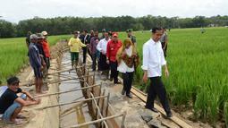 Presiden Joko Widodo berserta rombongan saat blusukan ke pembangunan saluran irigasi tersier di Bendungan Irigasi Tersier Desa Mandor Kabupaten Landak, Kalbar, Selasa (20/1/2015). (Rumgapres/Agus Suparto)