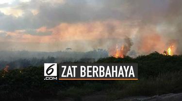 Asap dari kebakaran hutan mengandung gas dan partikel berbahaya.
