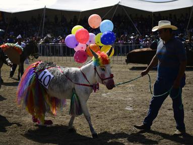 Peserta membawa keledainya yang dihias saat mengikuti National Donkey Fair di Otumba, Meksiko (1/5). National Donkey Fair ini diadakan setiap tahun. (AFP Photo/Pedro Pardo)