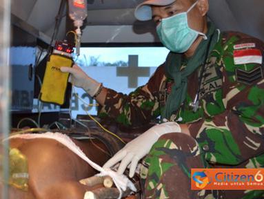 Citizen6, Kongo: Evakuasi masyarakat Kongo ke rumah sakit umum menggunakan ambulan satgas.