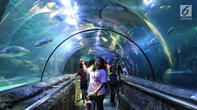 7 Tempat Wisata Ancol Yang Seru Alternatif Liburan Di