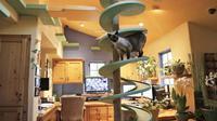 Rumah lucu ini di desain sedemikian rupa sebagai tempat tinggal kucing kesayangan.