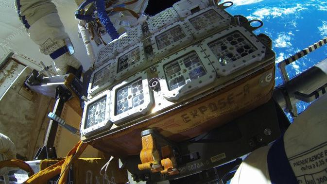 The Expose-R2 ISS. (Roscosmos)
