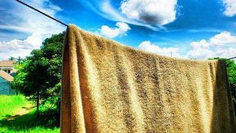 Kapan Waktu yang Tepat untuk Mengganti Handuk Mandi? Ini Penjelasanya