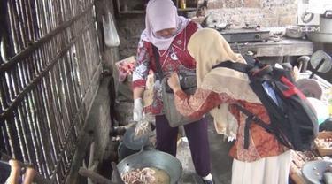 Kepolisian mengungkap tempat pengolahan jeroan ayam tiren (mati kemarin) dan bangkai anjing di  Bantul, Daerah Istimewa Yogyakarta