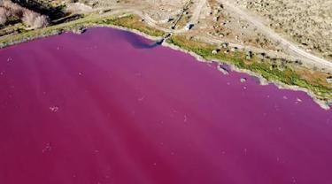Akibat pencemaran limbah, warna air danau di Argentina ini berubah menjadi pink. (Photo credit: DANIEL FELDMAN/AFP)