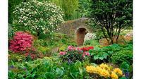 Tips berkebun aneh ini ampuh untuk membantu pertumbuhan tanaman di kebun Anda.