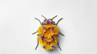 Patung Serangga Dari Kelopak Bunga Cantik Keren Abis Fashion