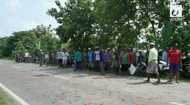 Para petani di Demak nekat membuang cabai hasil panen ke jalan raya lantaran harganya yang terlalu murah.