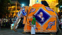 Seekor gajah terlihat dalam prosesi tahunan umat Buddha di Kotte Rajamaha Viharaya, Kolombo, Sri Lanka, 29 Agustus 2020. Prosesi tersebut dimeriahkan dengan beragam tarian daerah tradisional dan tarian budaya, serta gajah-gajah yang didandani dengan berbagai kostum mewah. (Xinhua/Tang Lu)