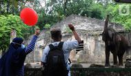 Pengunjung memberi makan gajah di  Taman Margasatwa Ragunan (TMR), Jakarta, Sabtu (23/10/2021). Mulai hari ini TMR ragunan dibuka untuk umum dengan menerapkan protokol kesehatan yang ketat. (merdeka.com/Arie Basuki)