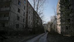 Pemandangan kota mati yang telah ditinggali penduduknya di kota Pripyat dekat pembangkit listrik tenaga nuklir Chernobyl di Ukraina 28 Maret 2016. (REUTERS / Gleb Garanich)