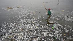 Pekerja mengumpulkan ikan mati yang hanyut ke daratan Freedom Island di sepanjang Teluk Manila, Filipina, Jumat (11/10/2019). Teluk Manila menjadi salah satu saluran air yang paling tercemar di negara tersebut. (Ted ALJIBE/AFP)