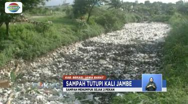 Sampah domestik melimpah hingga tutupi Kali Satria sepanjang 500 meter dan setinggi 1 meter.