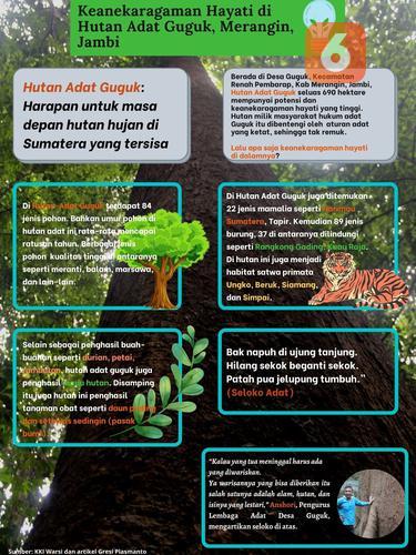 Infografis Keragaman Hayati Hutan Adat Guguk