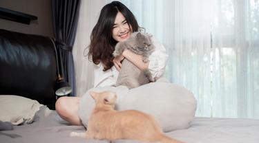 Rayakan Tahun Baru dengan Staycation Bersama Kucing Kesayangan, Apa Saja yang Harus Diperhatikan?