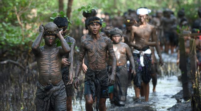 Warga berjalan menyusuri hutan mangrove saat mengikuti tradisi mandi lumpur atau mebuug-buugan di Desa Kedonganan, Denpasar, Bali, Jumat (8/3). Tradisi ini bermakna membersihkan diri dari dosa-dosa yang setahun belakangan dilakukan. (Sonny Tumbelaka/AFP)