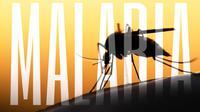 Jangan Percaya 5 Mitos tentang Malaria Ini (Mycteria/Shutterstock)