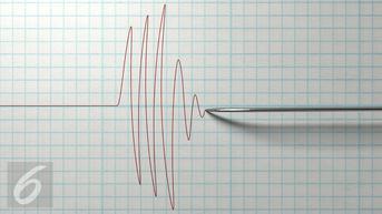 Gempa Magnitudo 5 Goyang Kawasan Kaur Bengkulu