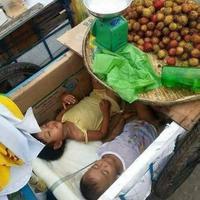 Dua balita tidur di dalam gerobak. (Sumber Foto: viral4real)