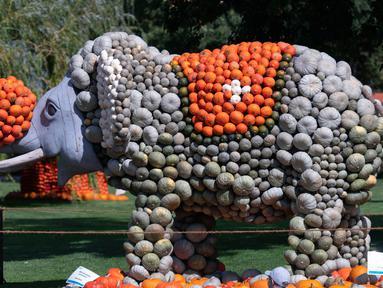 Patung gajah dari labu terlihat dalam pameran hortikultura Erfurt Garden Construction Exhibition di sebuah taman di Erfurt, Jerman, Selasa (3/9/2019. Patung-patung dalam pameran labu musim gugur tersebut dibuat oleh tukang kebun. (AP Photo/Jens Meyer)
