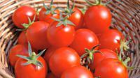 Suatu jenis tomat baru mengandung begitu banyak gizi yang diperlukan untuk kesehatan.