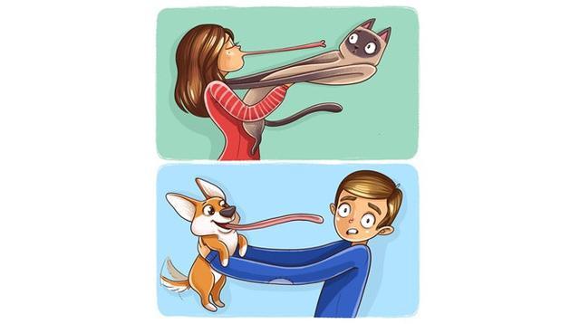 Ilustrasi beda anjing dan kucing (Sumber: Brightside)