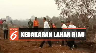Sambil mendengarkan laporan dan penjelasan dari Satgas Karhutla setempat, Jokowi juga melihat langsung proses pemadaman lahan.