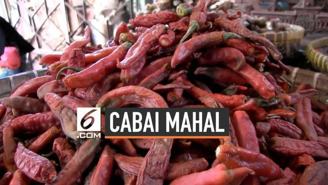 Mahalnya harga cabai mencapai Rp 70.000 per Kg membuat warga Tegal memburu cabai busuk di pasar. Harga cabai busuk  pun naik dari Rp 10.000 /kg menjadi Rp 20.000 /kg.