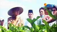 Cawapres Boediono berkampanye di perkebunan teh di daerah Neglasari, Narangdan, Purwakarta, Jabar. Selain berdialog, Boediono juga berjanji bekerja sekuat tenaga memajukan pertanian rakyat.