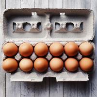 ilustrasi telur/Image by Wokandapix from Pixabay