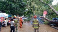 Pohon tumbang akibat angin kencang menimpa sejumlah kios dan pengendara motor di Jalan Hasanudin, Kawasan Dipatiukur, Kota Bandung, Minggu (28/3/2021). (Liputan6.com/ Diskar PB Kota Bandung)