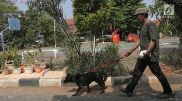 Warga membawa anjing peliharaannya saat akan melakukkan vaksinasi rabies di perumahan Jakarta Timur, Rabu (3/10). Vaksinasi rabies ini gratis bagi warga yang mempunyai hewan peliharaan. (Merdeka.com/Imam Buhori)