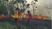 Kebakaran hutan di Konawe Selatan, mengakibatkan kabut asap dan lahan  terbakar seluas 6 hektar.(Liputan6.com/Ahmad Akbar Fua)