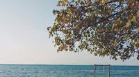 Ilustrasi tempat wisata Kepulauan Karimunjawa, Jepara. (Photo by Yohanes Dicky Yuniar on Unsplash)