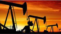 Harga minyak cenderung variatif didorong sentimen ketegangan Rusia-Ukraina dan serangan Amerika Serikat ke Irak.