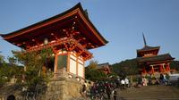 Wisatawan mengunjungi kuil Buddha Kiyomizu-dera di Kyoto, Jepang (31/10/2019). Kuil ini adalah situs Warisan Dunia UNESCO dan salah satu tempat wisata paling terkenal di Kyoto. (AP Photo / Aaron Favila)